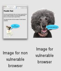 POODLE: új sebezhetőség a weben