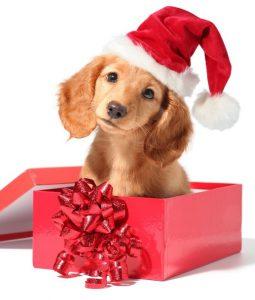 Boldog, békés karácsonyi ünnepeket kívánunk mindenkinek!