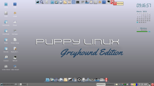 Greyhound lina 007