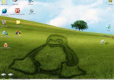 puppy-linux_screenshot_20111115134316_original