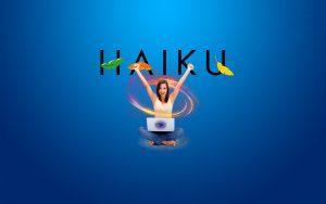 Haiku OS – jön az új hardveres 3D gyorsítás !