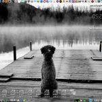 Xenialpup64 7.0.8.5 dvd – készült vegyes érzelmekkel…