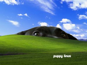 LICK 1.2 – a Puppy linux windows telepítő